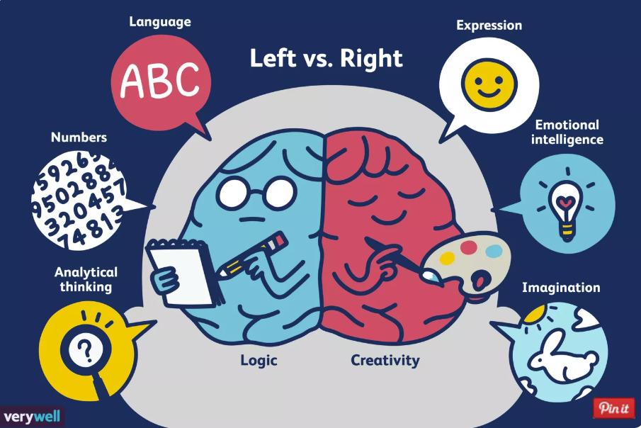 Left vs Right brain dominance